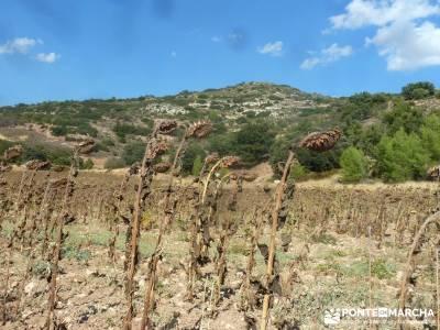 Valle del Río Ungría; gente vip grupos pequeños atención exclusiva al senderista